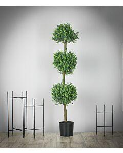 شجرة Unique tree