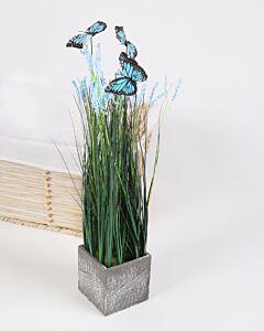باقة Butterflies- أزرق