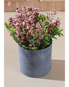 زرع زهور كاميل