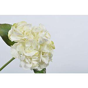 زهور صناعية ويندروت