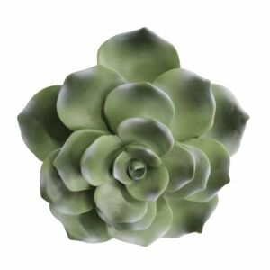 """Ppolyresin 8"""" succulent wall decor, green wb"""