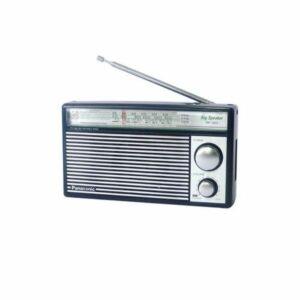 باناسونيك راديو RF-562D المتنقل